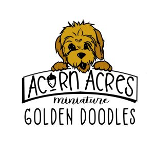 Acorn_Acres_Square_Color